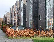 woningen groningen met stedelijke straatgevel